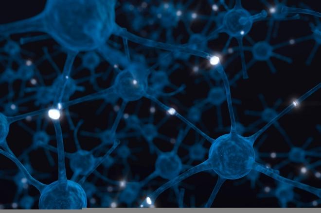 brain-neuron-birth-into-being